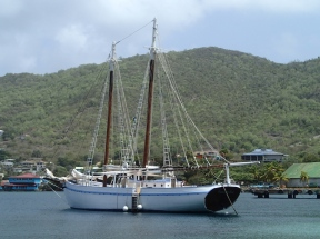 The Friendship Rose - Bequia