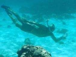 JP - Tobago Cays